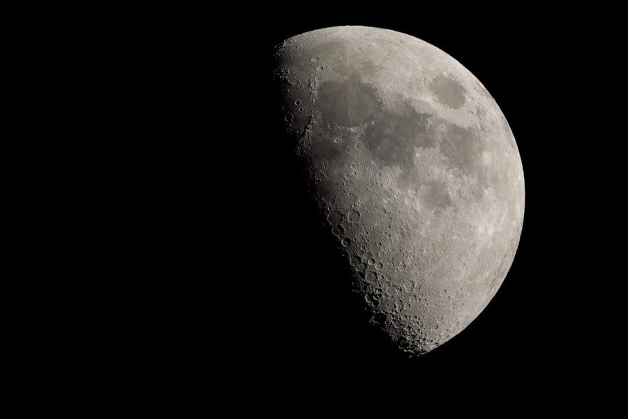 上弦の月+1日